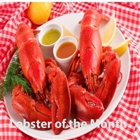 Lobster Dinner of the Month for 3 months