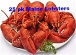 *25 MEDIUM FRESH COOKED LOBSTERS - (1.25-1.50 LBS)