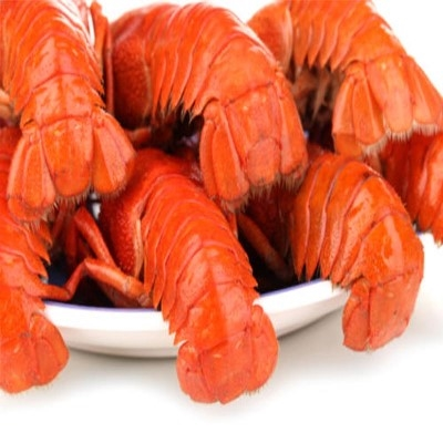 *22 Pack Large Lobster Tails