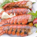*12 JUMBO XL LOBSTER TAILS (8 to 10 oz.)